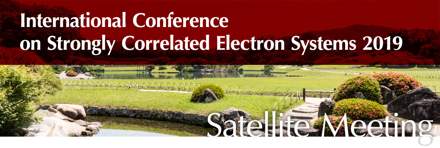 Satellite Meeting